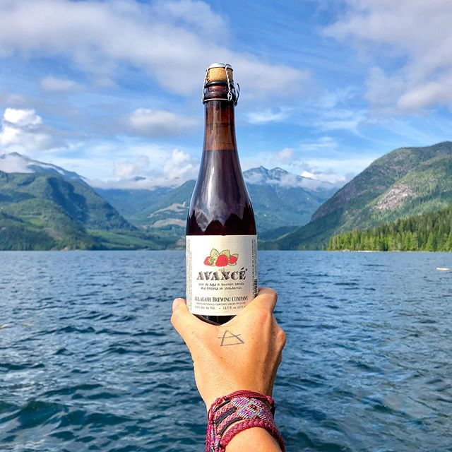 Currently drinking: Avance from @allagashbrewing • Exploring the Discovery Islands and camping in a little boat out on the ocean has been unreal. Warm water, beautiful sights, and exciting adventures have made this one heck of a fun summer getaway. • Swipe for video of just some of the wildlife all around; orcas, dolphins, jellyfish, and humpbackwhales (not to mention the eagles constantly circling above, the myriad of birds, the prawns and crabs coming up in the trap and the fish on the line) 🐬 🐋 🦅 🦀 🦐 🎣 . . . . . . . . #fortheloveofcraftbeer #hellobc #discoveryislands #desolationsound #beautifulbc #pnw #pnwwonderland #exploremore #thirstyexplorer #drinktheworld #exploremore #venturefurther #getoutstayout #whalezbro #discoverychannel