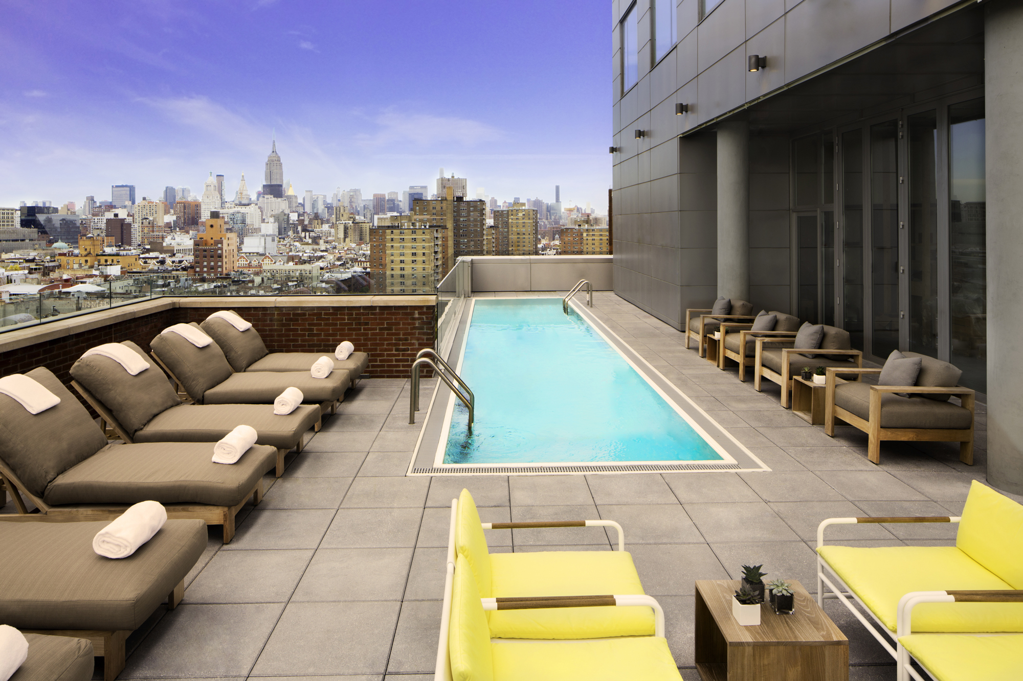 The rooftop pool at Mr. Purple