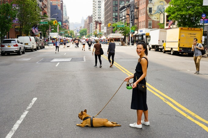 pet-ownership-nyc.jpg