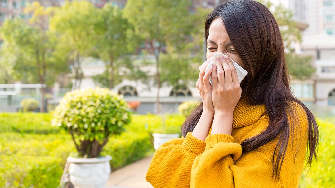 seasonal allergy relief.png
