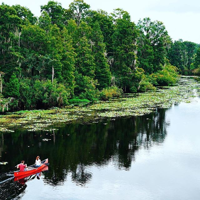 Adventure awaits 🚣♀️ Now that the summer heat is beginning to die down (okay maybe not as much we'd like but at least we're not breaking 95 😅) it's the perfect time to check out Hillsborough County Parks! Don't have a canoe or kayak? No worries! These parks offer rentals:⠀ Lettuce Lake⠀ E.G. Simmons⠀ Edward Medard⠀ Lake Conservation⠀ Upper Tampa Bay⠀ For more info check out the link on our facebook page (in bio ➡️) .⠀ 📷: @boltsandthebay