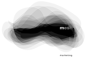 mesh marketing