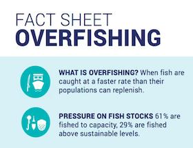 Fact Sheet: Overfishing | Waitt Institute