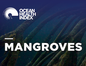 Mangroves | Ocean Health Index