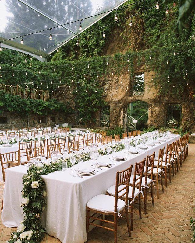 weddings outside 1.jpg