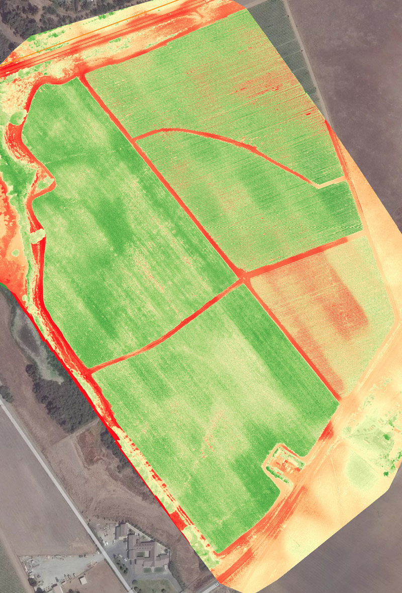 NDVI results show red as stress areas of crop.