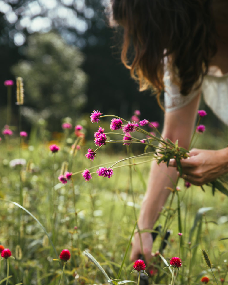 Megh cuts flowers in her field near Cleveland, Ohio -  Photography by Christine Higgs for    Arhaus The Blog