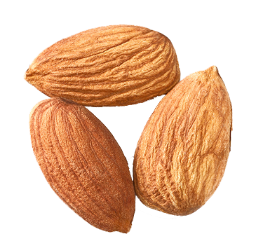 isolated-almonds2.png