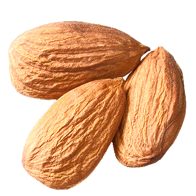 isolated-almonds3.png