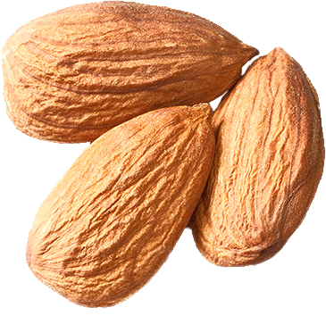 isolated-almonds.png