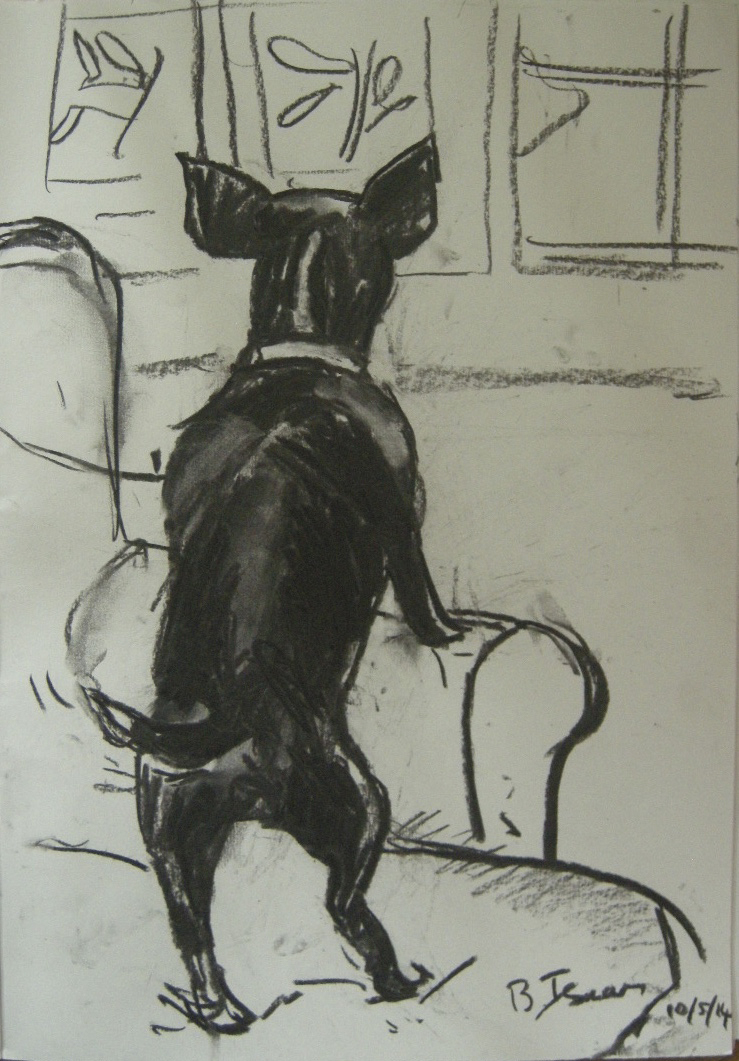 SNOOPY DOG  Charcoal on Paper | 30 x 42 cm | 2014  (commission) UK