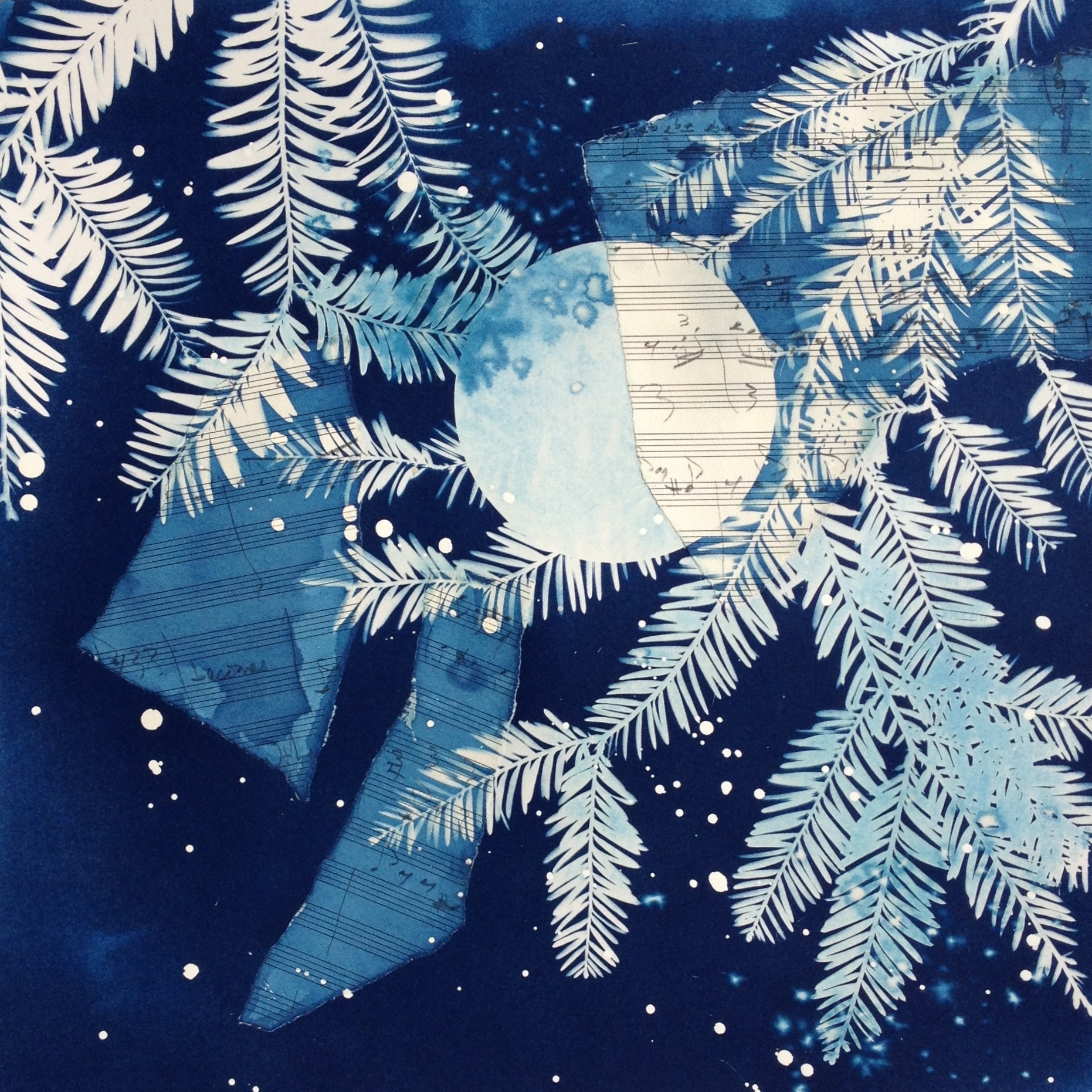 Longstock Moon  | cyanotype with collage | 20 x 20 | SOLD,  prints available