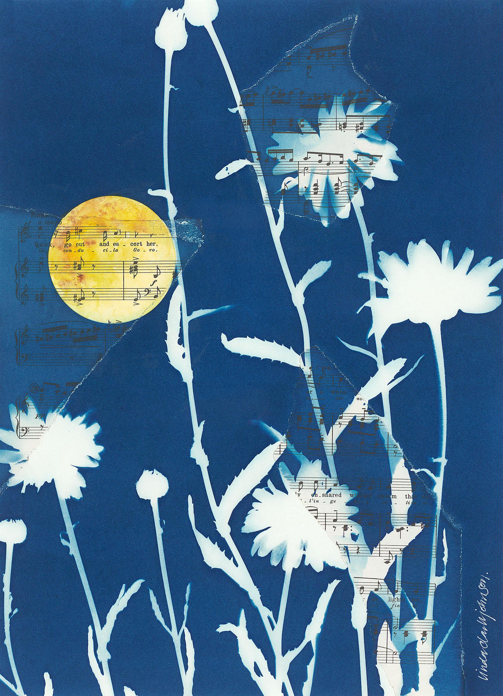 Paul's Moonlit Garden  | 11 x 15 | cyanotype and watercolor