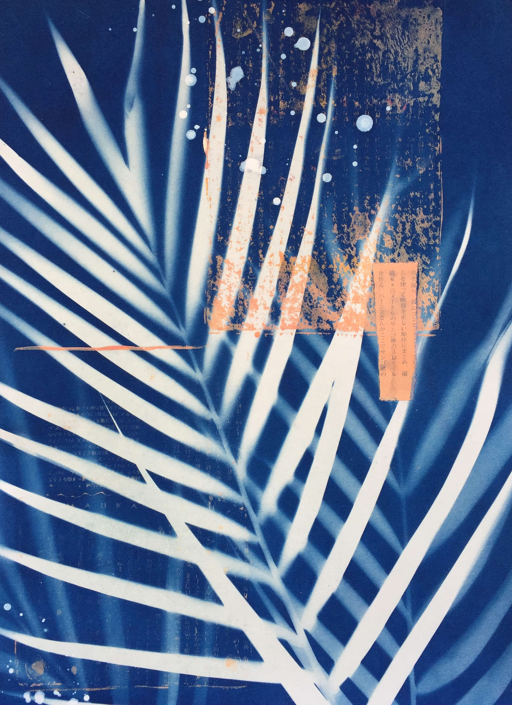 Star Sprinkled Palms 1  | cyanotype, collage, and monoprint, framed | 16 x 20 | $300
