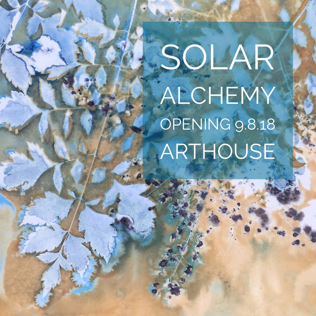 Garden Alchemy  20 x 20 | altered cyanotype on cradled panel