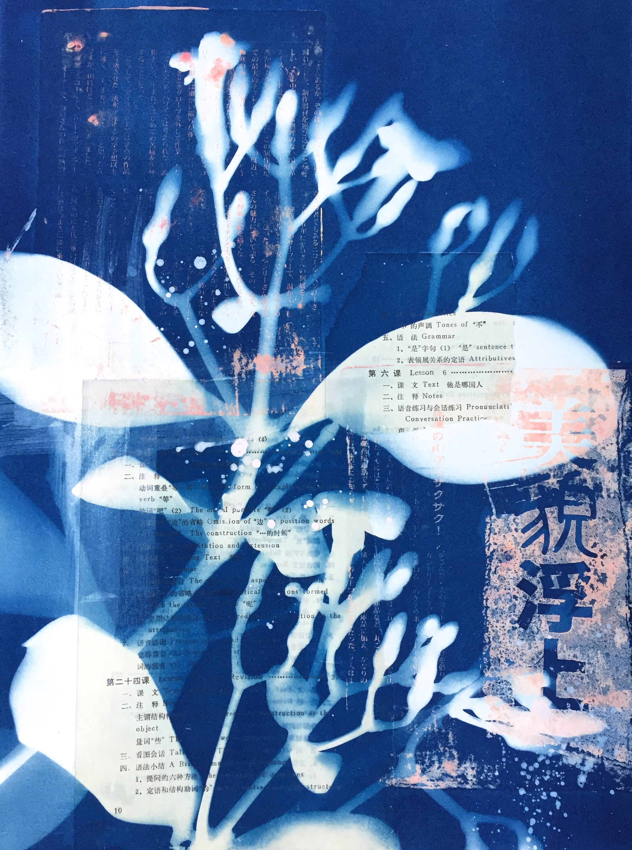 Kahaku Makani  16 x 20 cyanotype and monoprint on paper