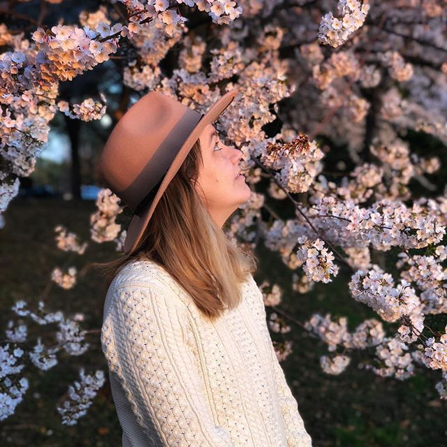Obligatory #cherryblossom #tidalbasin photo, 2019 edition. 📷: @notorious.jen . . . #CherryBlossom #sakura #CherryBlossomFestival #CherryBlossomDC #PeakBloom #springblossomshere #pinkflowers #petalsandprops #floralstories #underthefloralspell #cherrytrees #prunus #SaveTheTidalBasin #nationalmallnps #TheNationalMall #findyourpark #igdc #popville #ACreativeDC #walkwithlocals #202Creates #BYThings #myDCcool #washingtondaily #washmagphoto #washingtondc #bokeh #depthobsessed