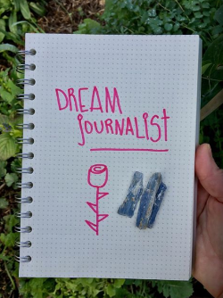 My current dream journal