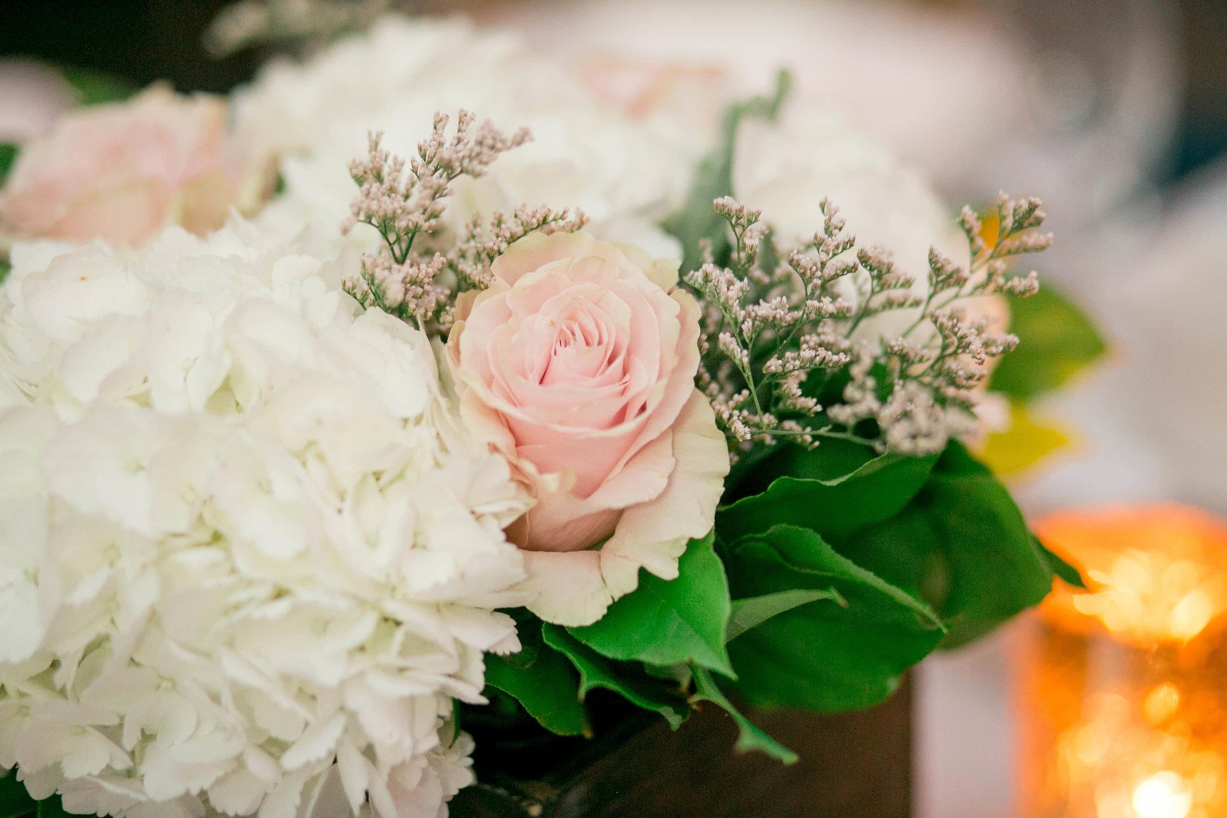 Stefanie___Bernard___Daniel_Ricci_Weddings_High_Res._Finals__423.jpg