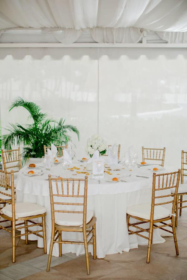 Ashley___Michael___Daniel_Ricci_Weddings_High_Res._Final_0335.jpg