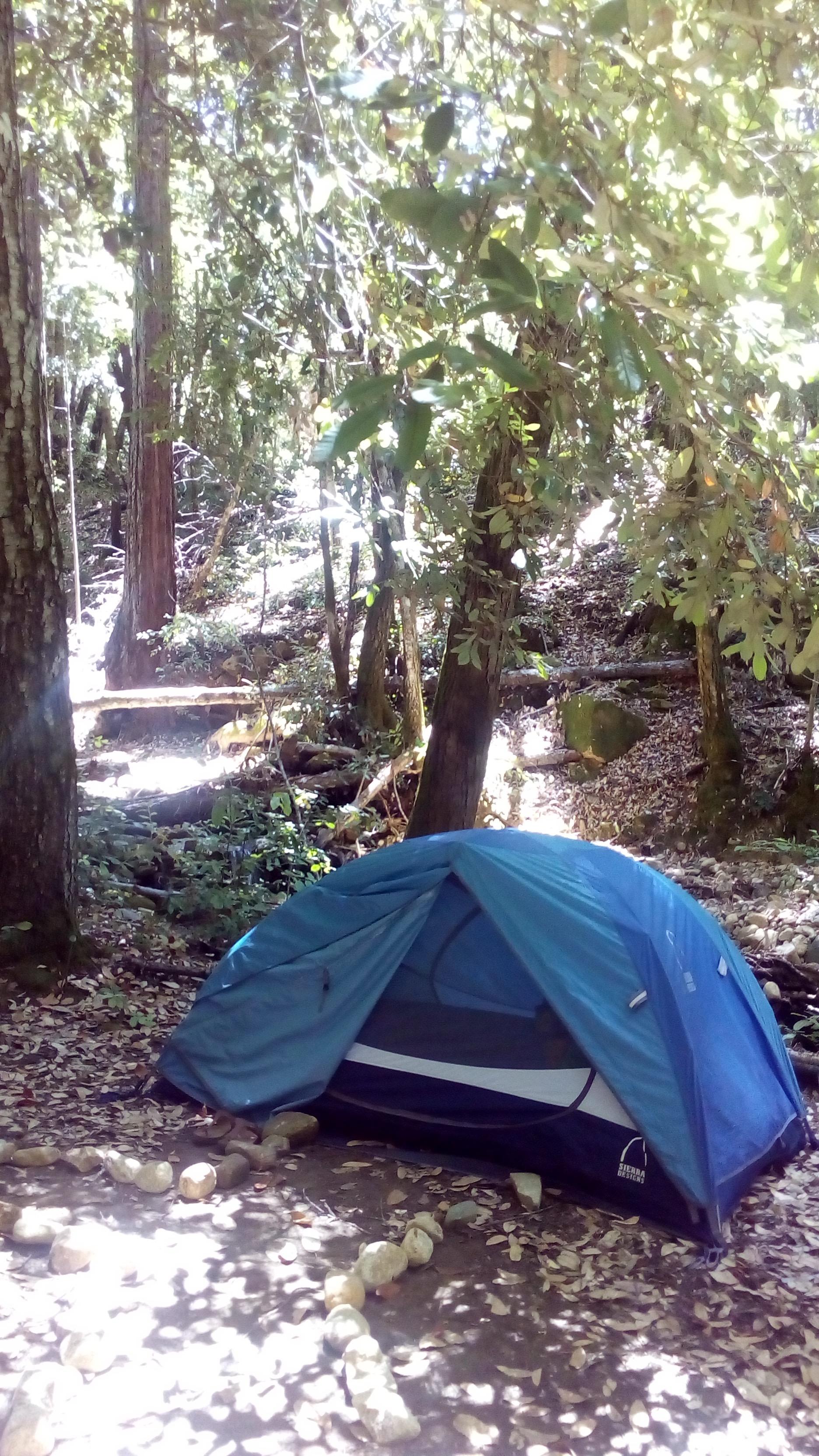 小川沿いの、我が家。レッド・ウッズの中のキャンプなんて、最高〜!