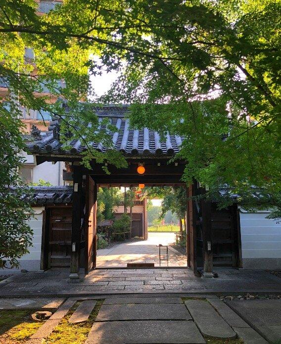 たまに近くのお寺の坐禅会にも行きます。家から自転車10分で行けるのは、 興聖寺 。常連さんが多くて、みなさん30分座ってお経を唱えたら、淡々とお帰りになります。日常に浸透している感じが、良いですね。