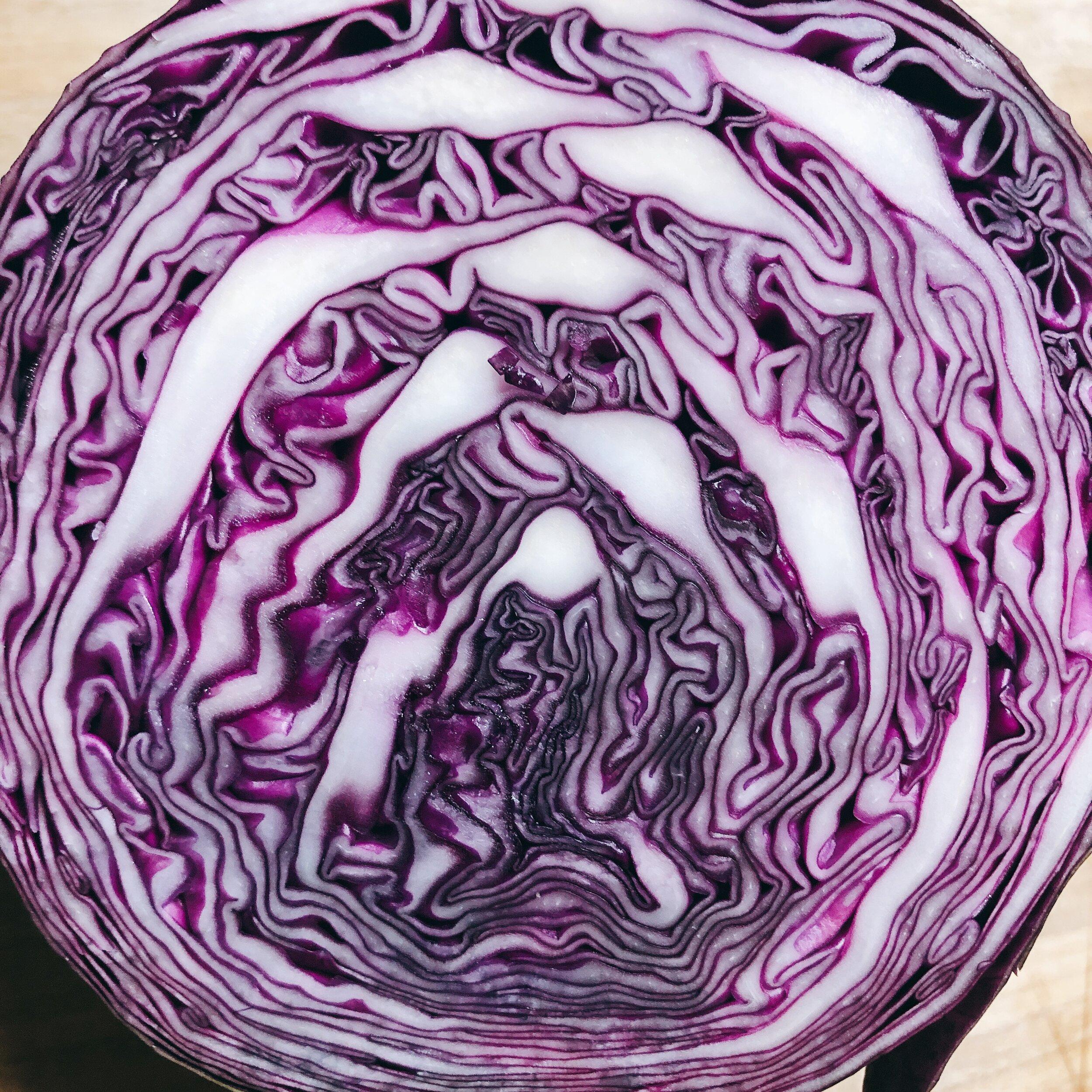 野菜の断面の色合いとフォルムの美しさに魅了されてみたり。