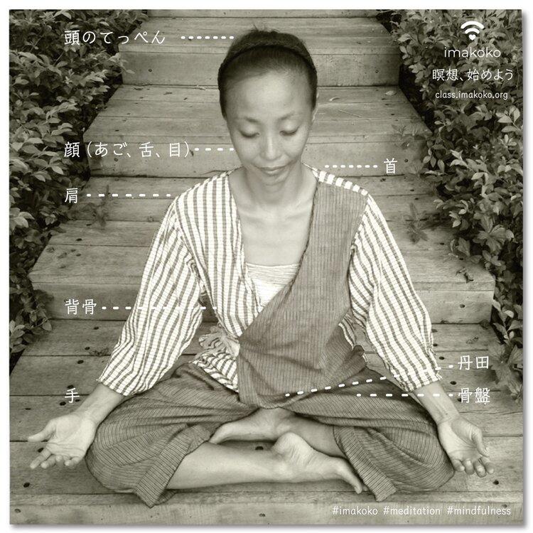 「瞑想ビギナーコース」  もご参加、お待ちしていますね。