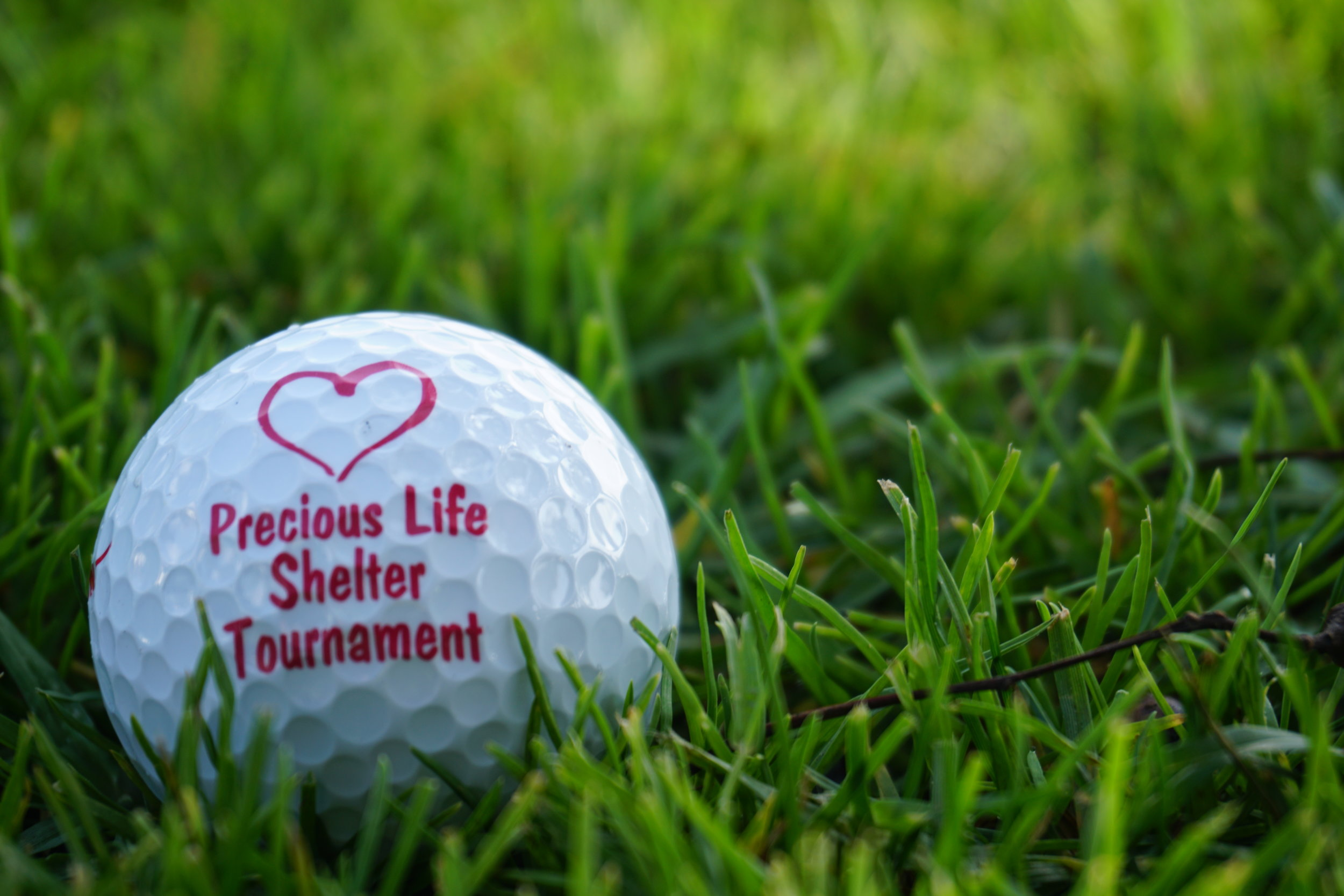 2017 Tee Off For The Heart - Click here to view more photos