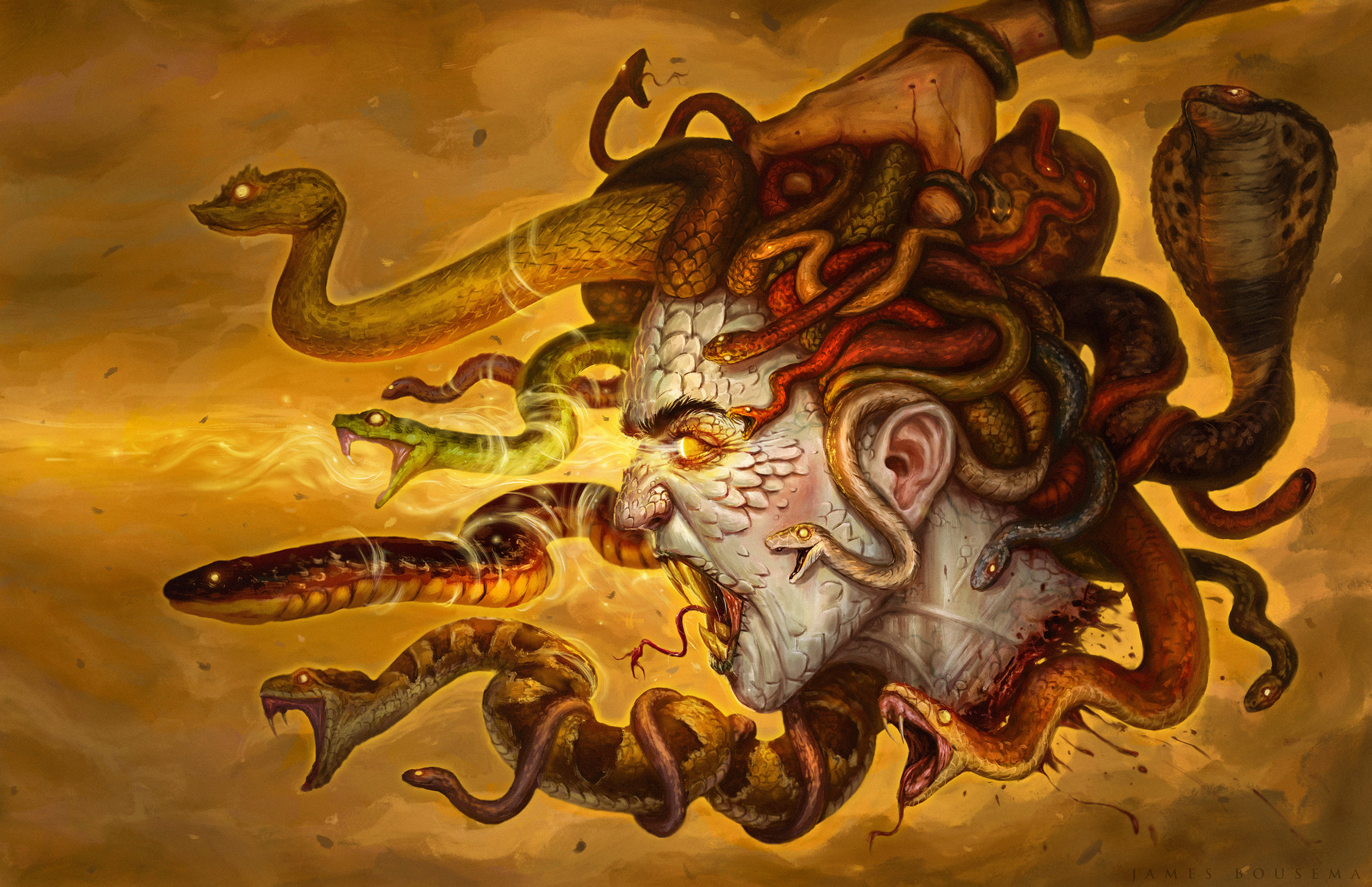 The head of Medusa imagined with various types of poisonous/venemous snakes Done in Photoshop CS6