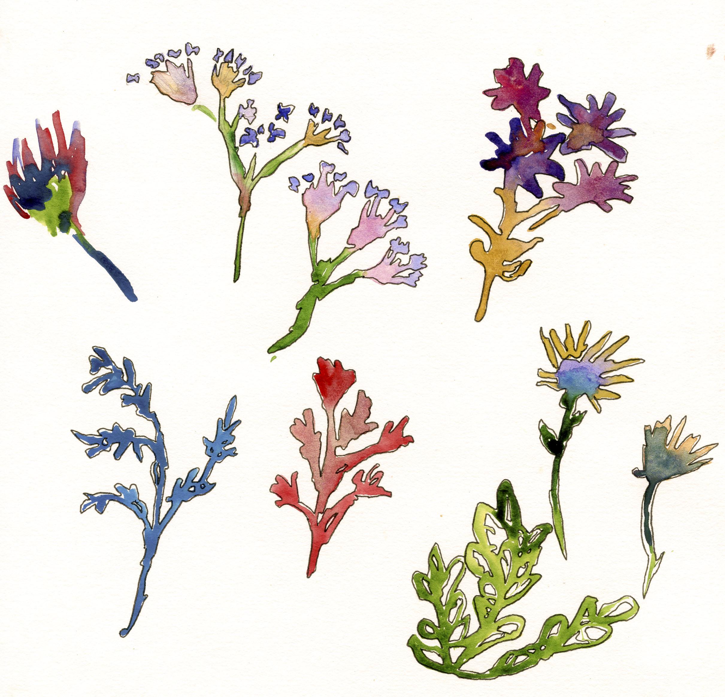 waterflowers.jpg