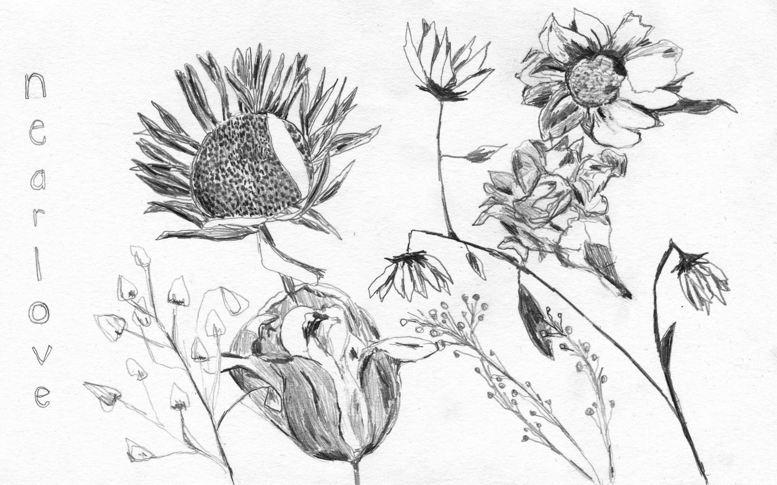 nearlyloveflowers.jpg