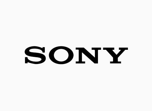 HDS-CCTV-Sony.jpg