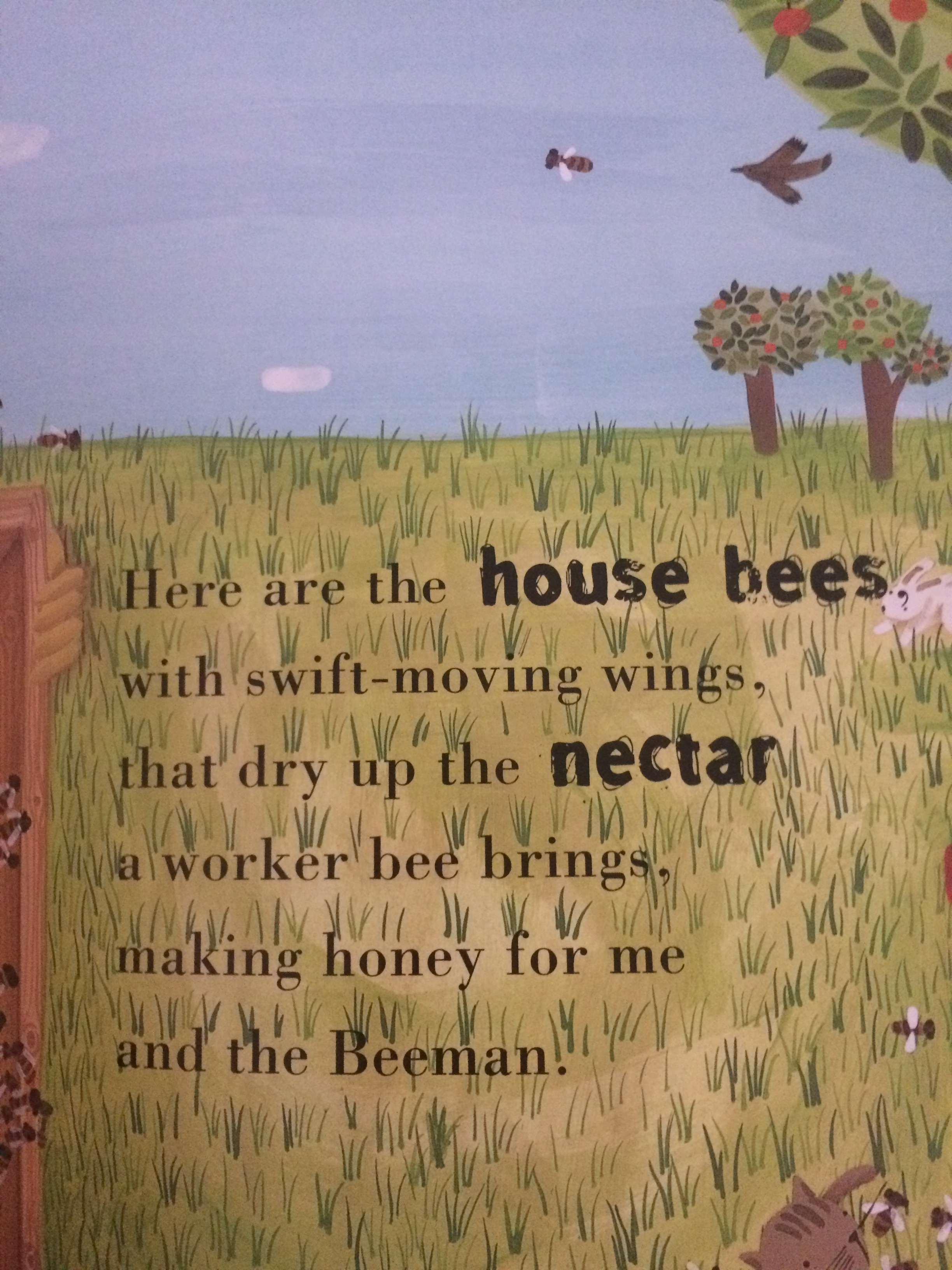 """""""The Beeman"""" teaches the different types of honeybees and the job they all play in the hive."""