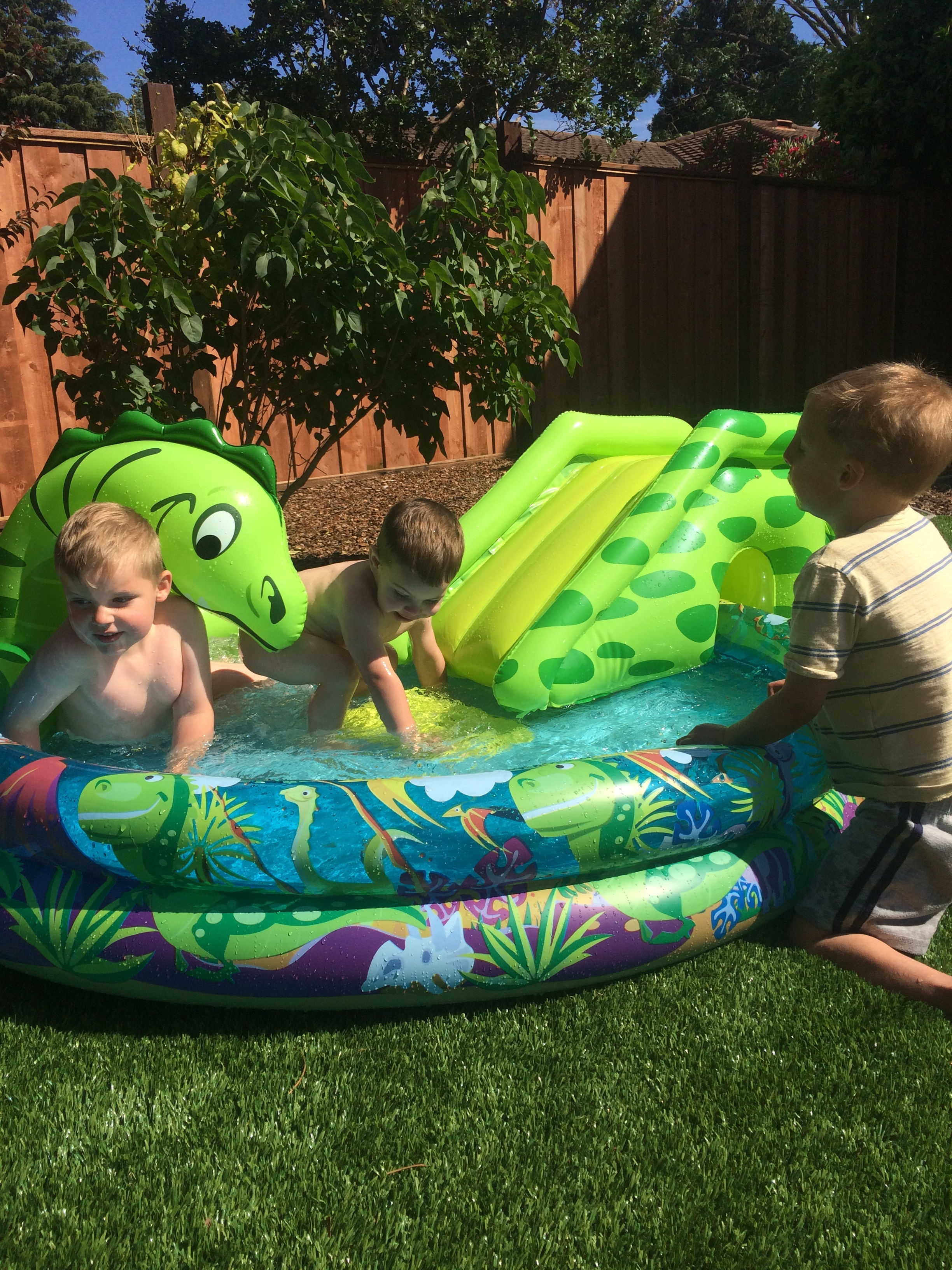 Damien, Everett, and Atticus playing in my sister's backyard.