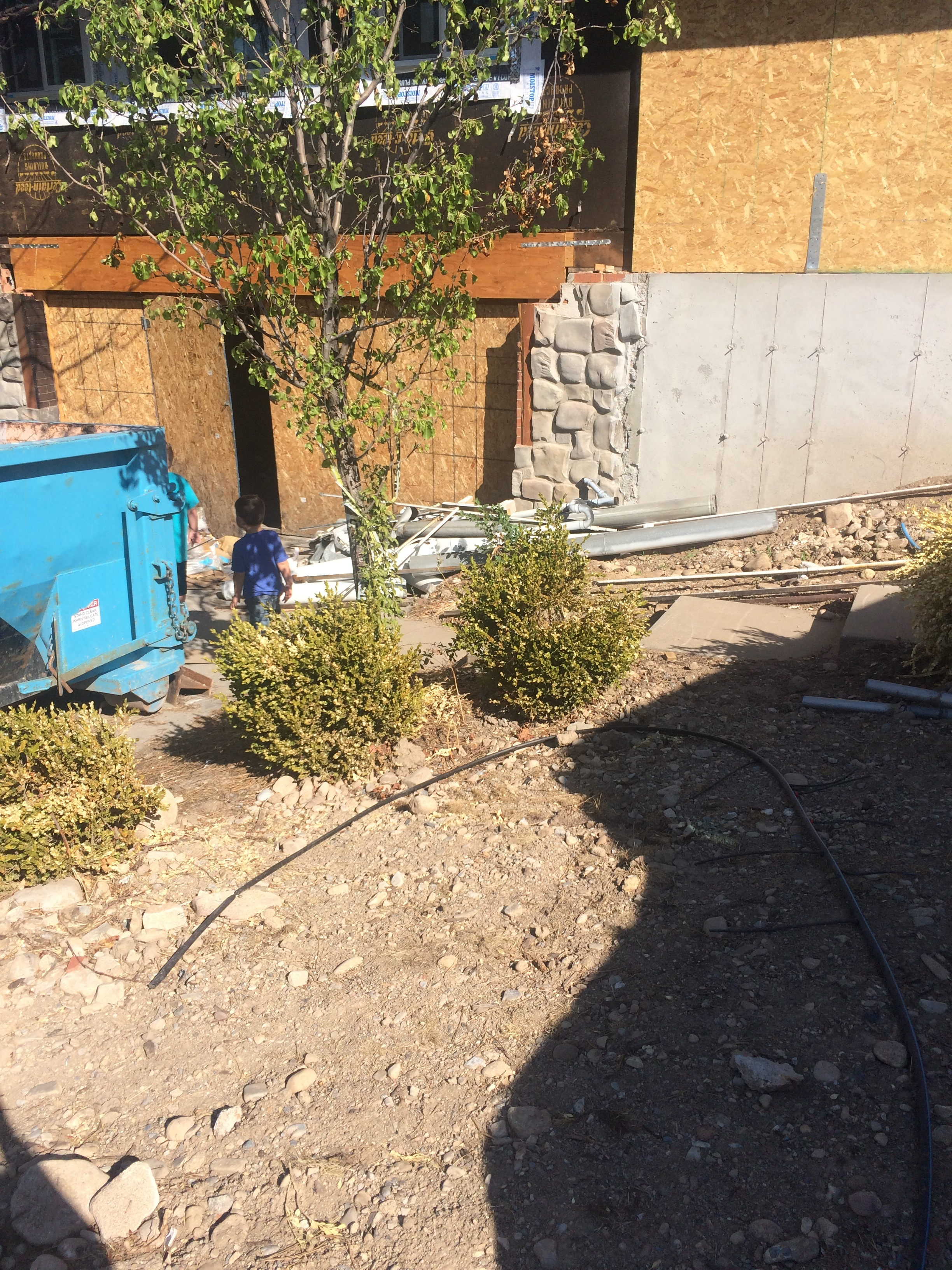 I sent this picture to my insurance adjuster last week after he told me they wouldn't pay for landscaping because, if I water it, the lawn will come back. Now we're getting a landscaping bid, thank goodness for the State Insurance Commissioner.