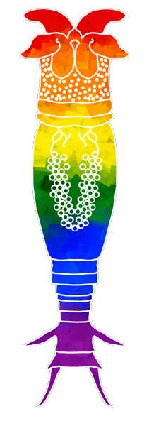 Rainbow Rotifer . Credit:Moiety Mouse