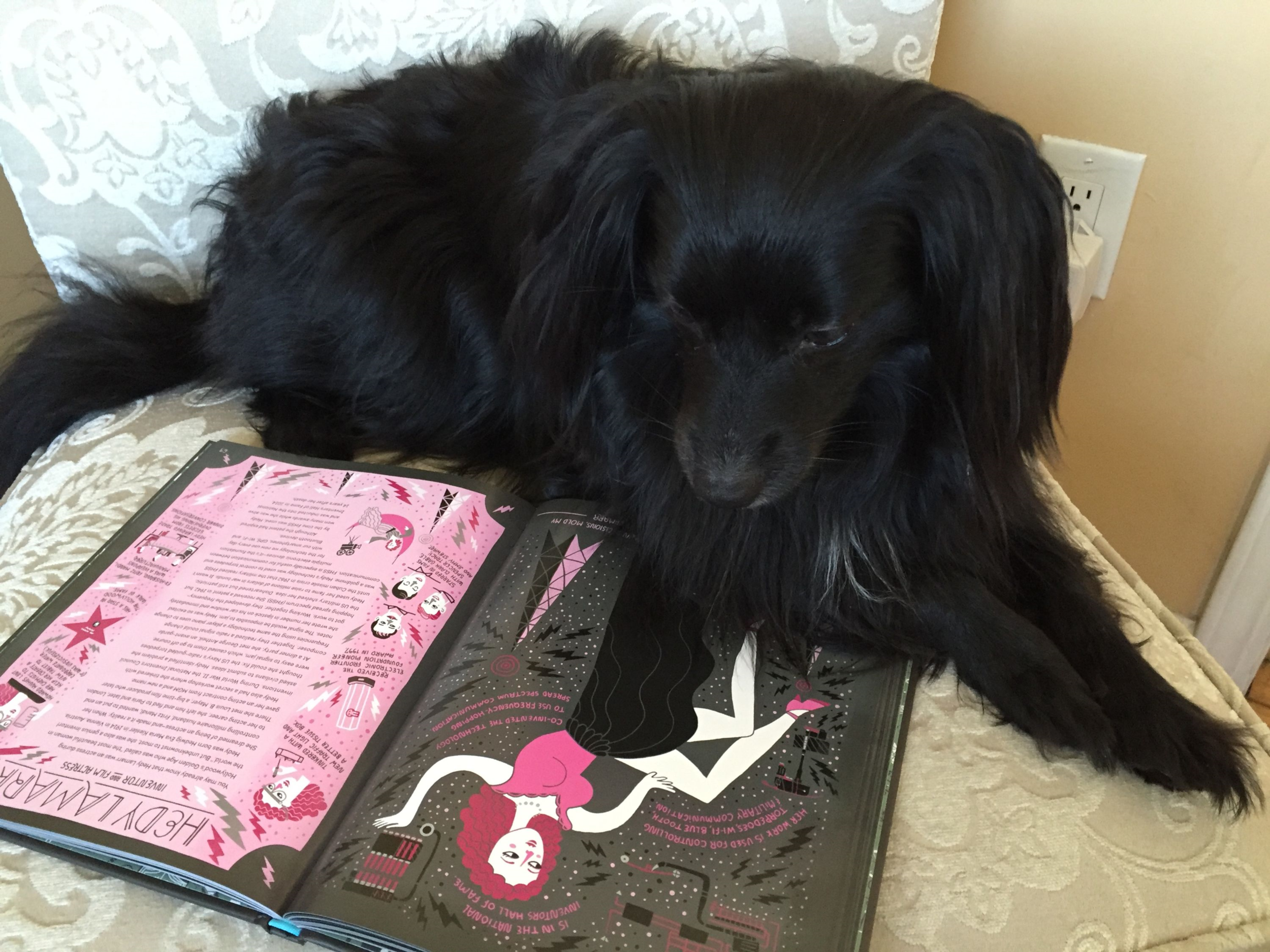 Did I take a picture of my dog reading this book? You bet I did. Why wouldn't I? Credit: KATIE MCKISSICK