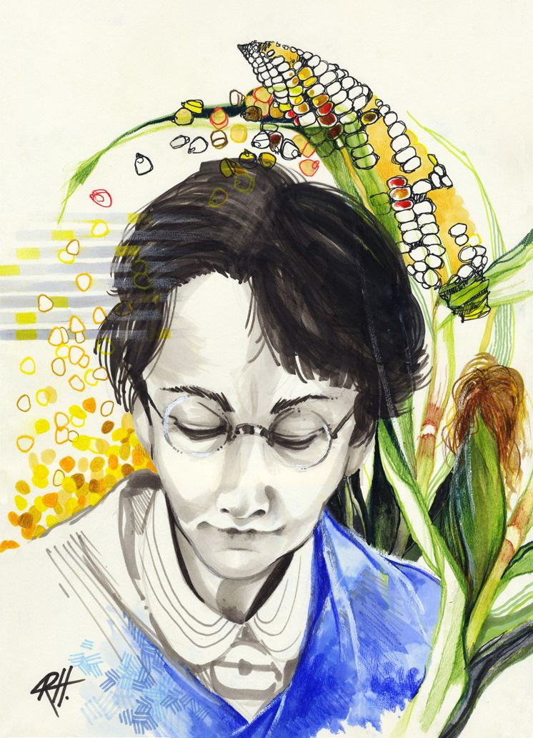Portrait of Barbara McClintock  by chid0ri. Find chid0ri on  deviantArt  and her blog,  The Empty Triangle .