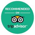 trip_advisor_green_bkgrnd.jpg