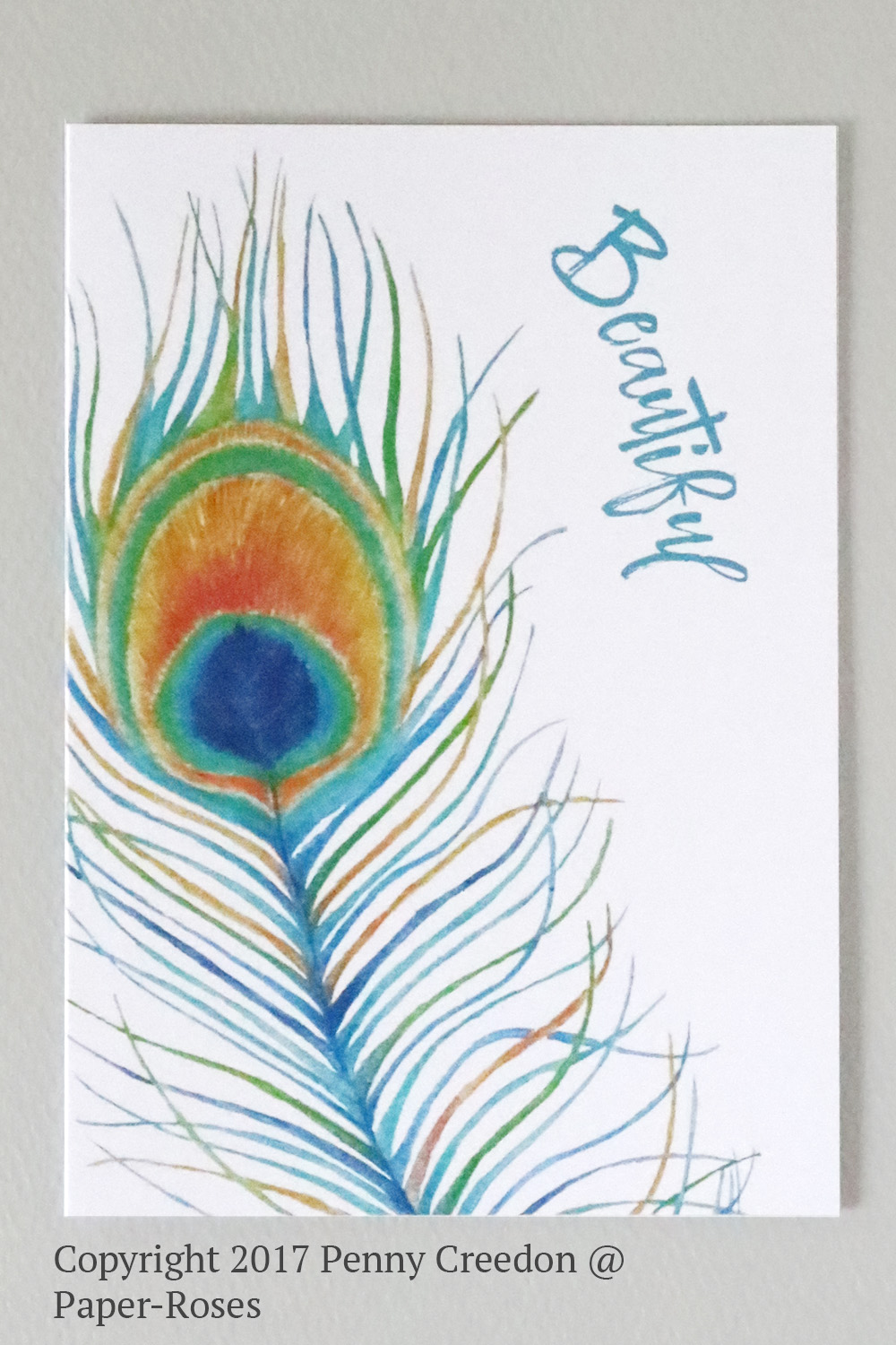 Paper-Roses | Greetings Cards | Peacock feather card