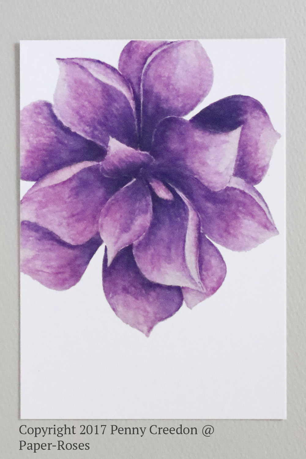 Paper-Roses | Note Cards | Succulent 3 note card
