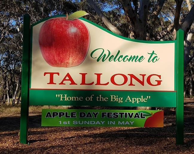 Tallong apple day - sing.jpeg