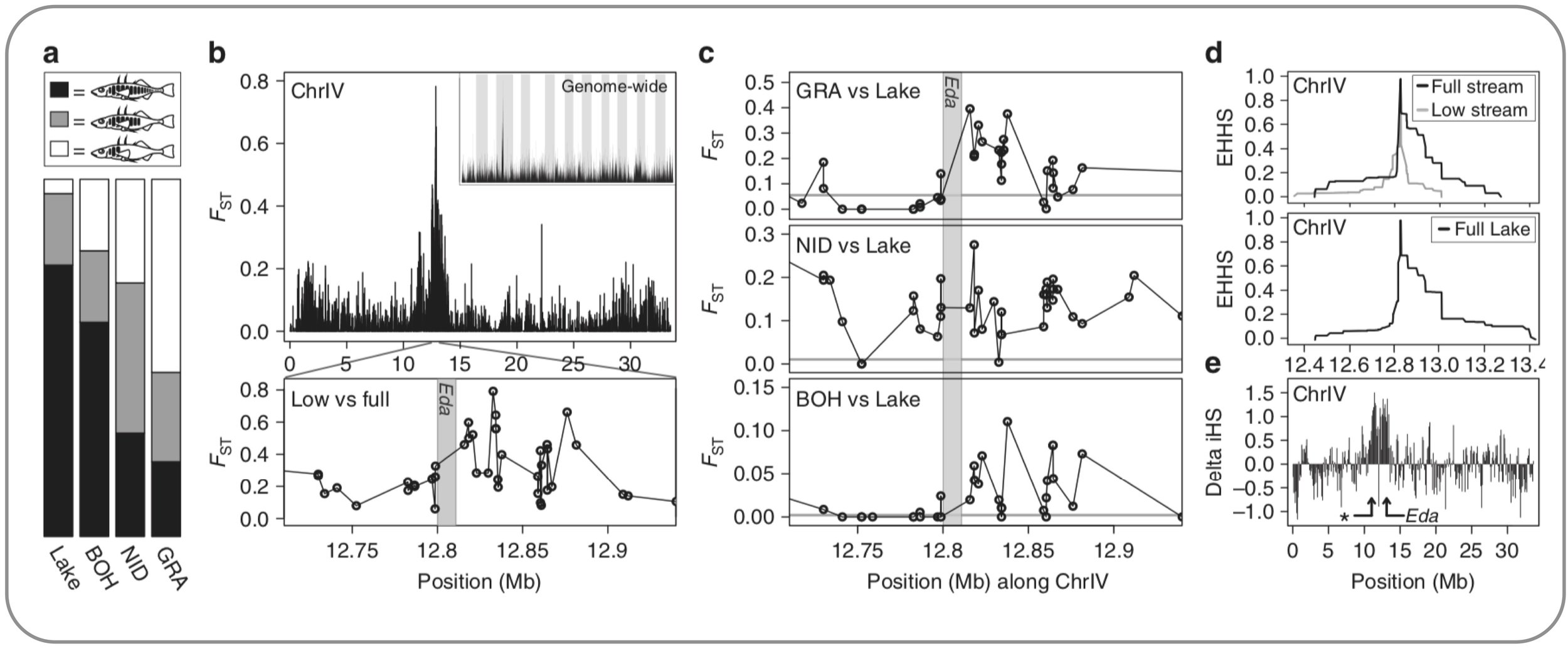 Lake-stream divergence of stickleback in lateral plating and the associated  molecular signatures   (   Roesti et al. 2015   ) .