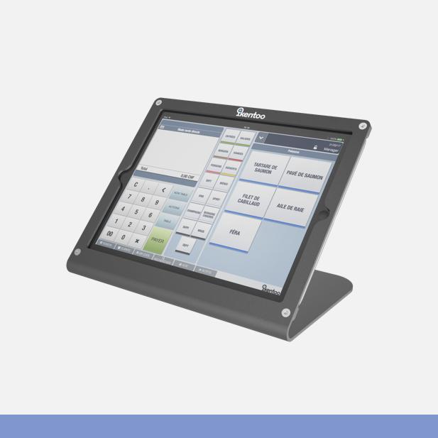 2-3 iK iPad stand.png