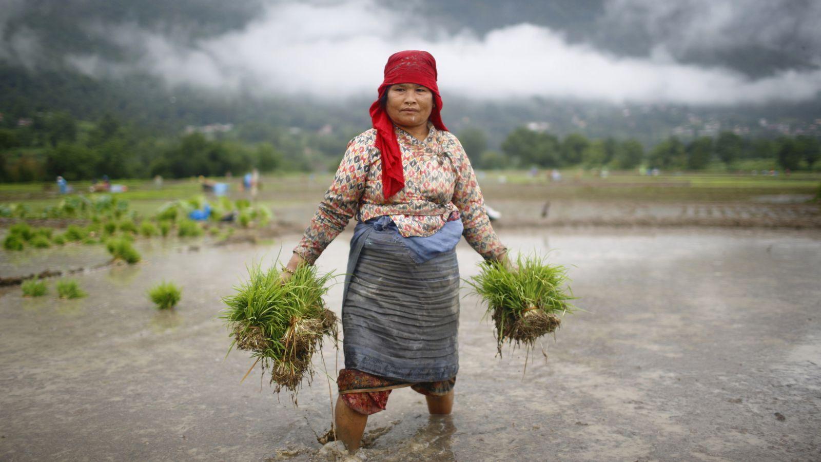 Women's Carbon Footprint  -