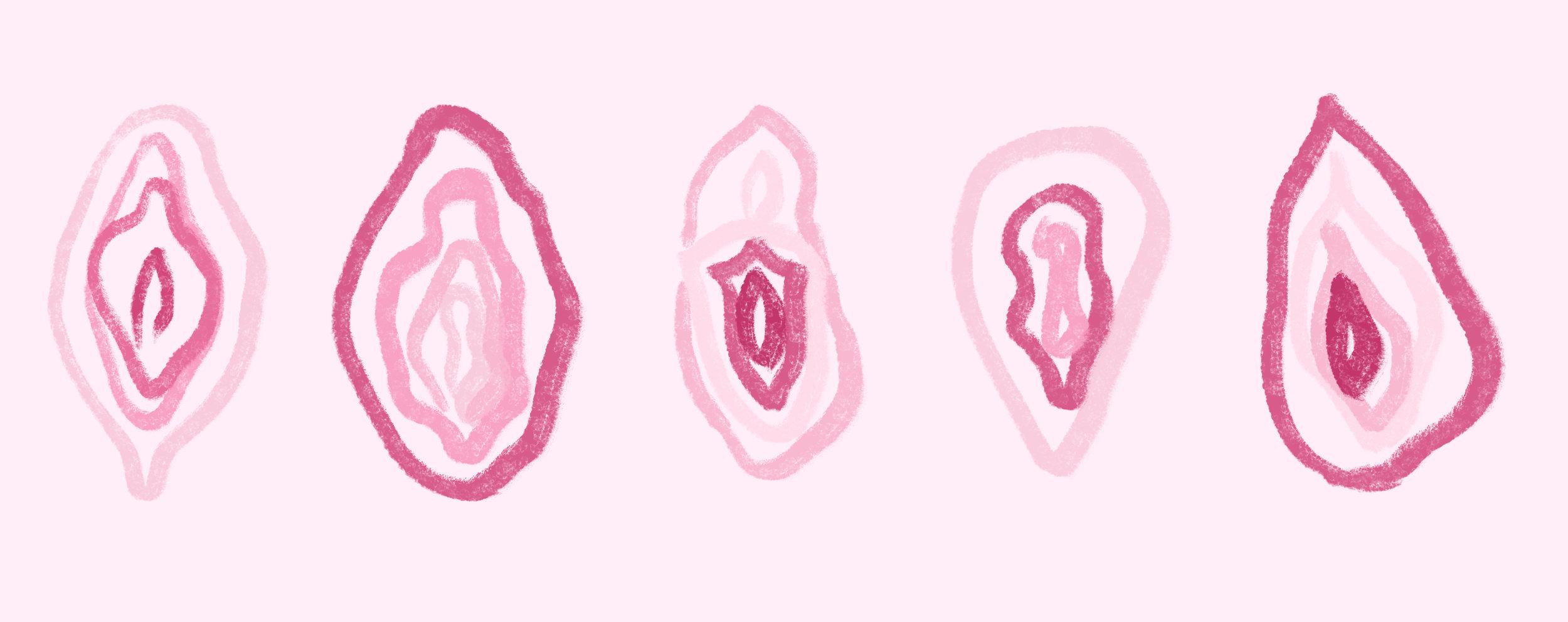 Illustration by Hazel Mead