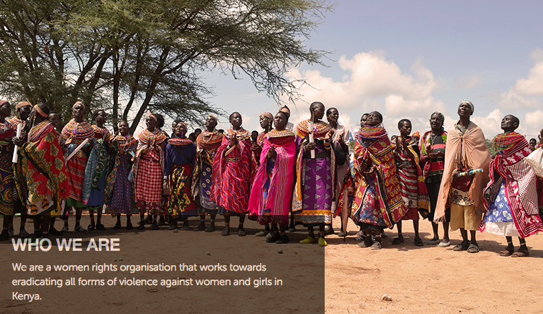 Coalition on Violence Against Women