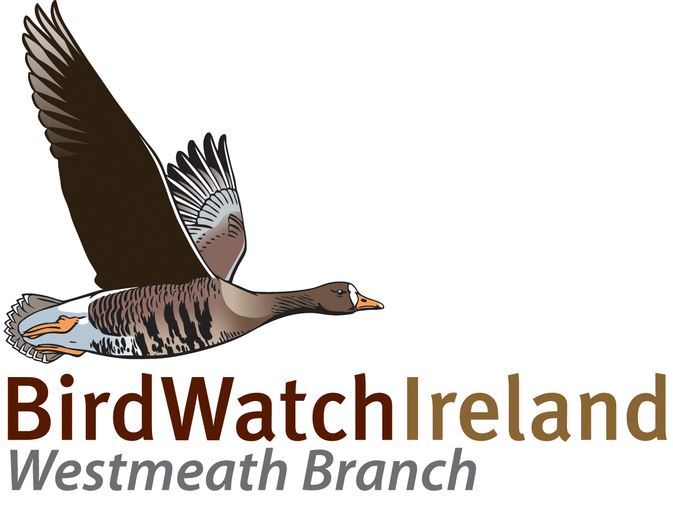 BirdWatch Ireland Westmeath Branch