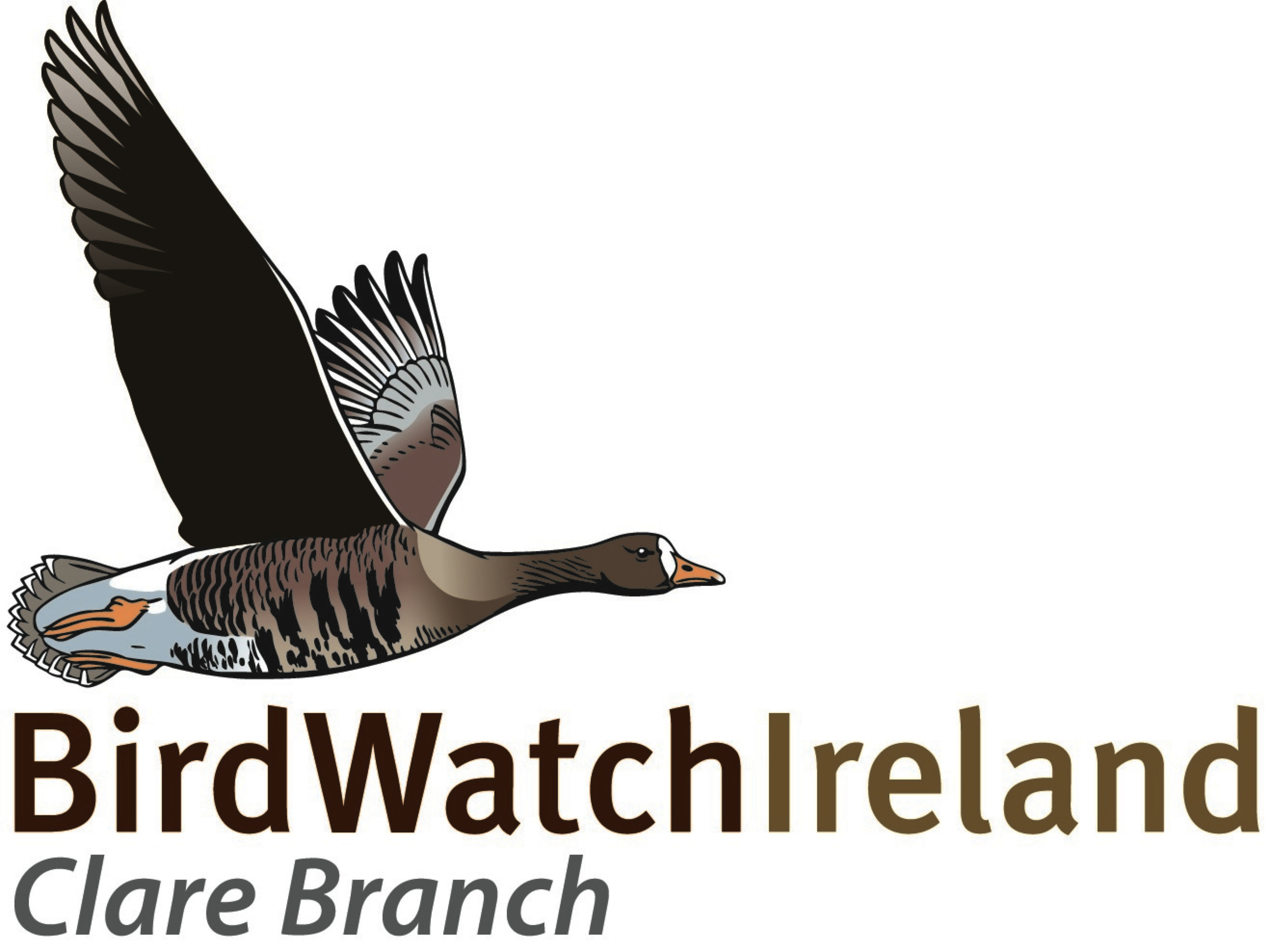 Birdwatch Ireland Clare Branch